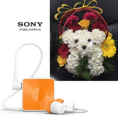 Sony Stereo Bluetooth Headset - SBH-20, Puppy Flower Arrangement - send Cell Phone n Flowers to India, Hyderabad | Us2guntur