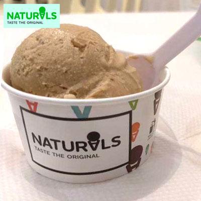 Choco Cream Ice Cream 500gms Naturals Send Naturals