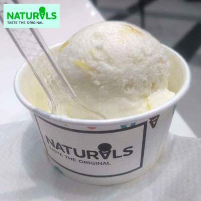 Tender Coconut Ice Cream 500gms Naturals Send Naturals