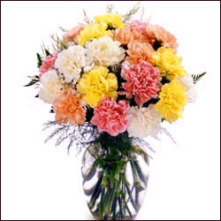 Carnation Bouquet with Vase - Click here to View more details about this Product
