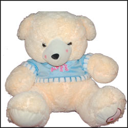 CREAM TEDDY WITH SWEATER- BST 9002 - Click here to View more details about this Product