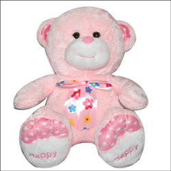 Pink Teddy - BGB-21 - Click here to View more details about this Product