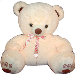Cream Teddy BST 9059 - Click here to View more details about this Product