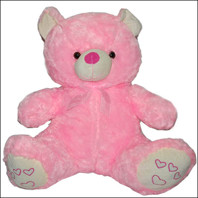 Pink Teddy Bear - BGB -122 - Click here to View more details about this Product