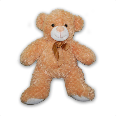 BROWN  Teddy PNP - 3676 - Click here to View more details about this Product
