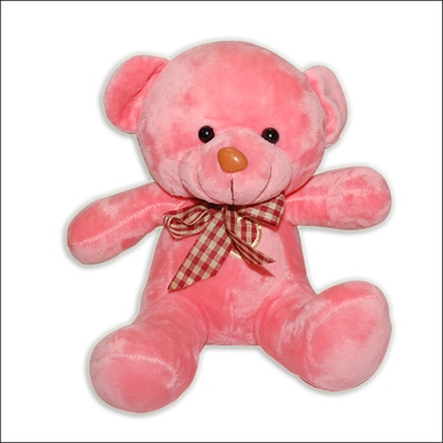 Pinkish Teddy - BGB 213- 2 - Click here to View more details about this Product