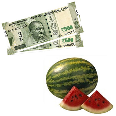 Cash Rs.1001 + Watermelon - 1 piece - Click here to View more details about this Product