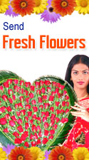 FRESH FLOWERS TO CHENNAI