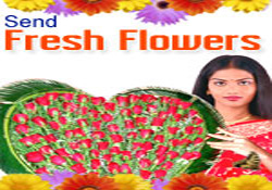 SEND FRESH FLOWERS TO INDIA